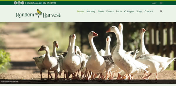 Recent Projects - The Best Website Design for Random Harvest